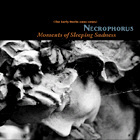 NECROPHORUS. MOMENTS OF SLEEPING SADNESS